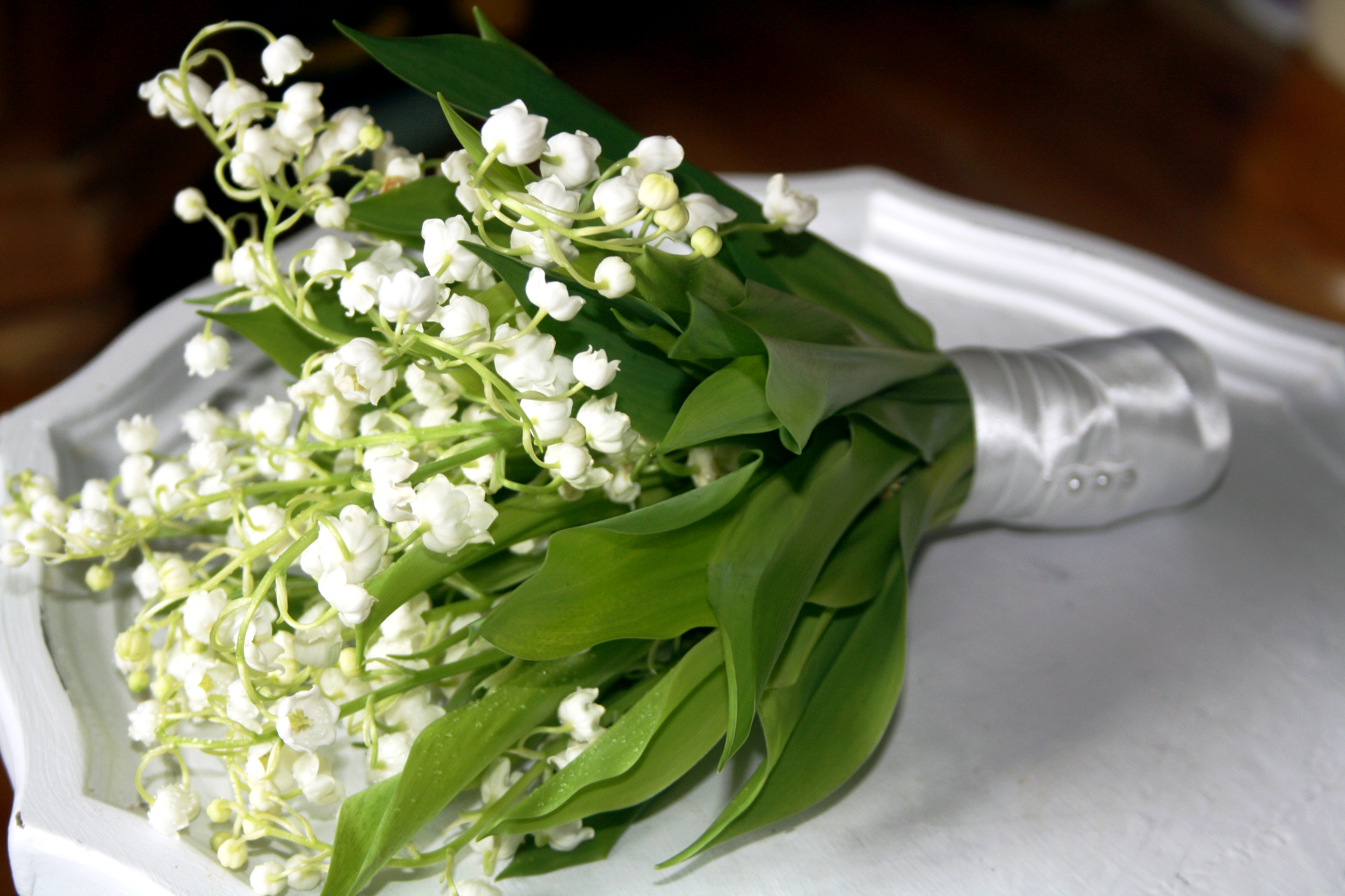 Joanne Truby Floral Design | All our adventures in the world of ...